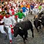 AMO Bulls
